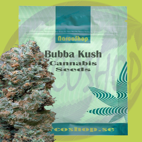 Buy-Bubba-Kush-Cannabis-seeds
