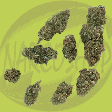 Lifters Cannabis Flower(Trimed, lifter hemp flower)