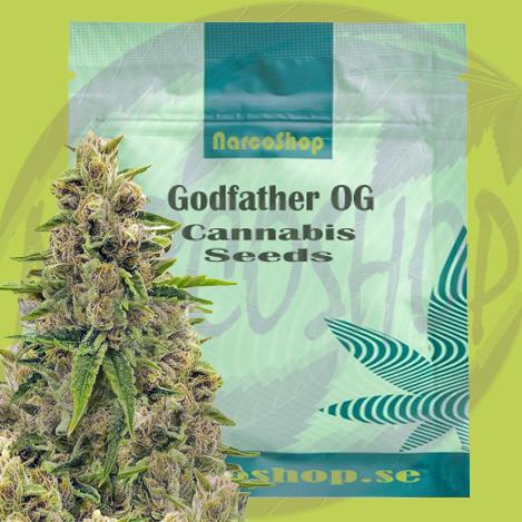 Godfather-OG-Cannabis -Seeds-Online